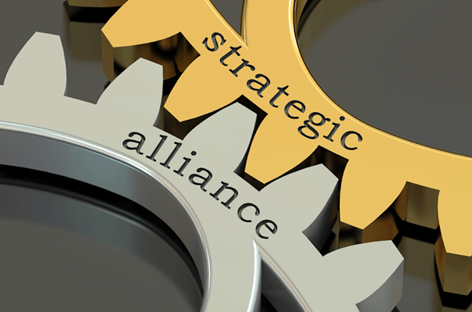 STATEGIC ALLIANCE